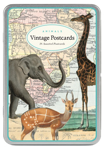 Animals Vintage Postcards